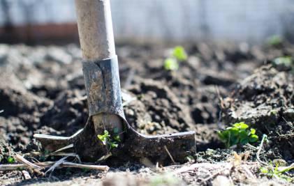 Aprīļa dārza darbi