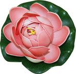 Dārza dekors, rozā ūdensroze